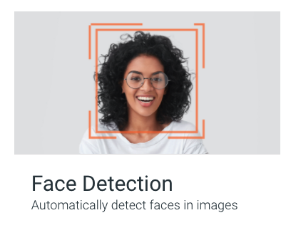 Image representing the face detection section.